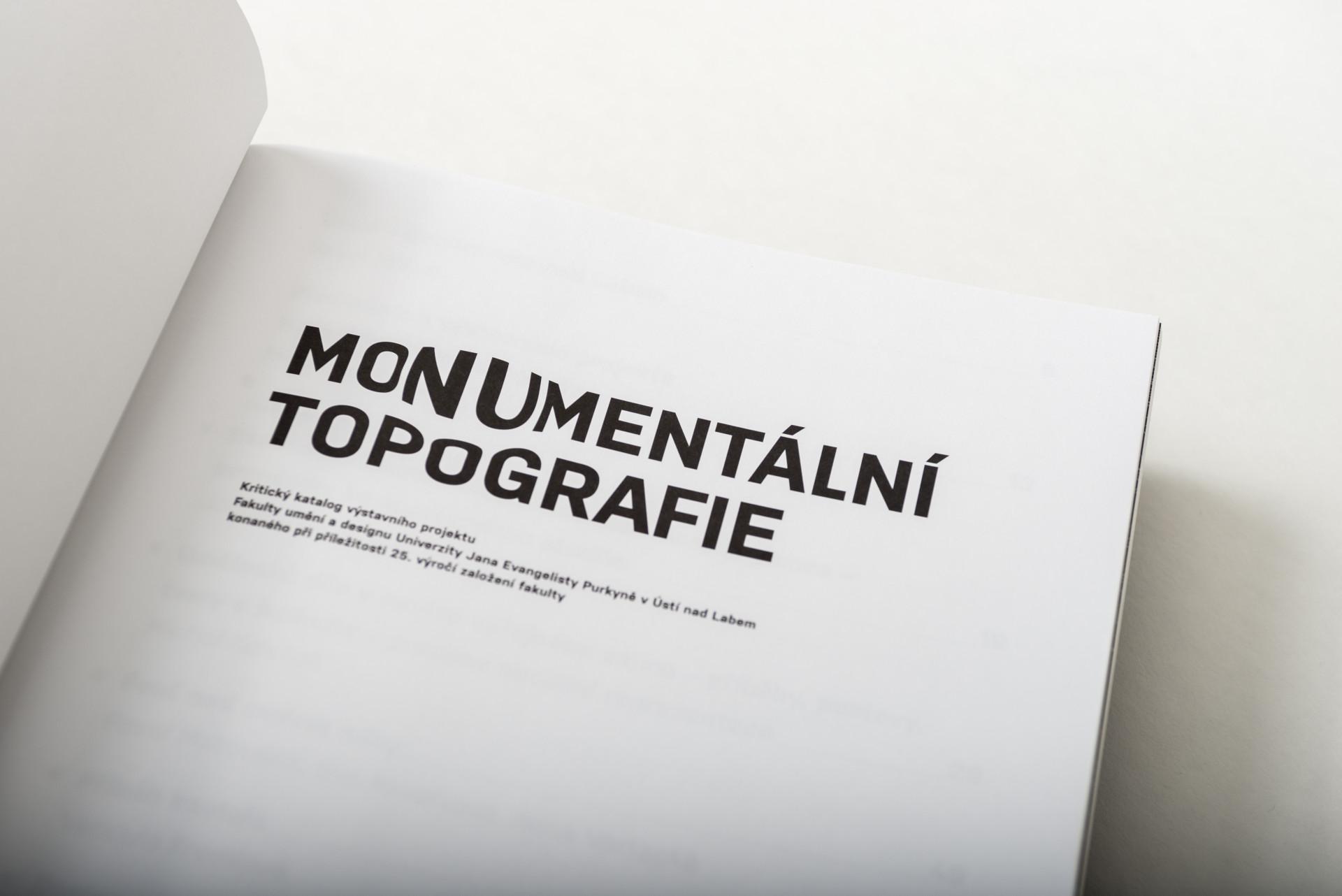 monumental_topography-7- Dany Vigil
